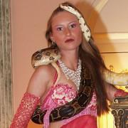 Schlangenshow