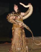 Schlangenshow Ursula Stöter